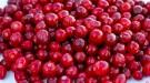 Cranberry Yararları (Turna Yemişi) Nelerdir? Neye Uygun Gelir?